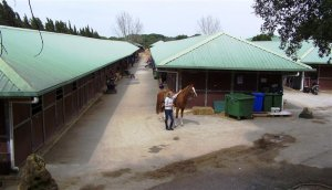 Montenmedio stables during the sunshine tour