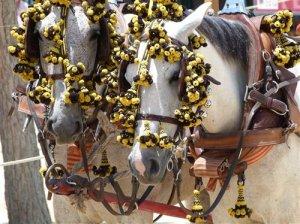 Chiclana Feria